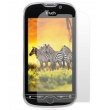 Protector Pantalla HTC My Touch 4G